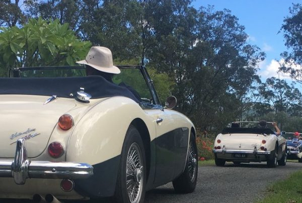 Morgans Heading out from amamoor Lodge